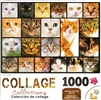 Collage Cats 1000 Piece Puzzle