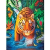Tiger Pool 500 Piece Puzzle