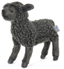 Hansa Little Black Lamb
