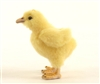 "Chick Plush Toy by Hansa 4.5"" H"