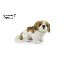 "Shih Tzu Brown and White 10"" H"