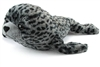 "Harbor Seal Pup 20"" L"