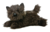 Toto Cairn Terrier Dog