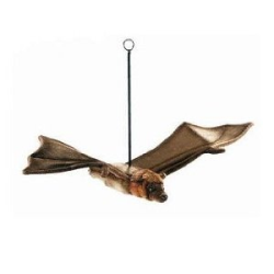 Hansa Flying Fox Bat