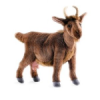 Hansa Brown Mountain Goat