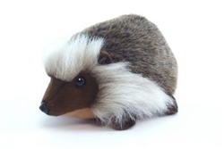Hansa Hedgehog