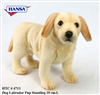 Hansa Yellow Lab Puppy