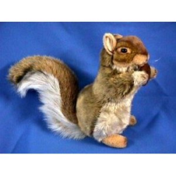Hansa Red Squirrel