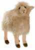 Hansa White Sheep