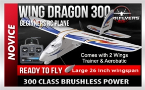 Wing Dragon 300