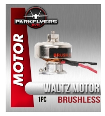 Waltz Brushless Motor