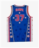 Hawk #37 - Harlem Globetrotters Iconic Replica Jersey by Champion