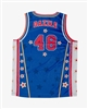 Dazzle #48 - Harlem Globetrotters Iconic Replica Jersey by Champion
