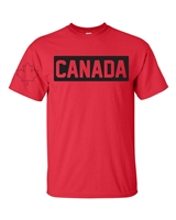 Canada Hockey With Maple Leaf on the Sleeve Men's T-Shirt (1738)