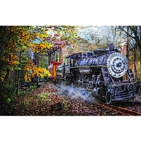 SunsOut Train's Coming 1000 Pc Jigsaw Puzzle