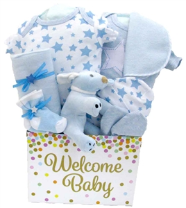 Baby gift baskets pesonalized gifts glitter gift baskets baby gift negle Choice Image
