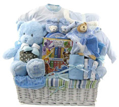 Baby boy gift baskets unique baby gifts for boys new baby gift toronto negle Choice Image
