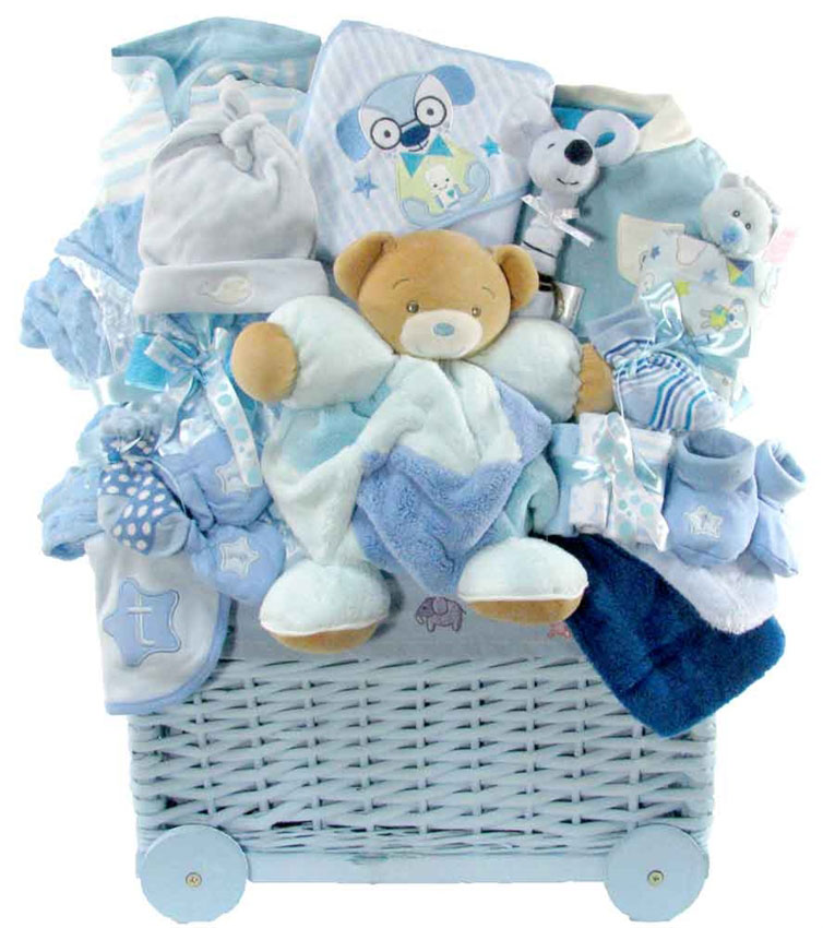baby gift baskets  sc 1 st  Glitter Gift Baskets : welcome baby gift basket - medton.org