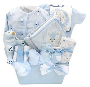 Baby boy gift baskets unique baby gifts for boys baby gift baskets negle Choice Image