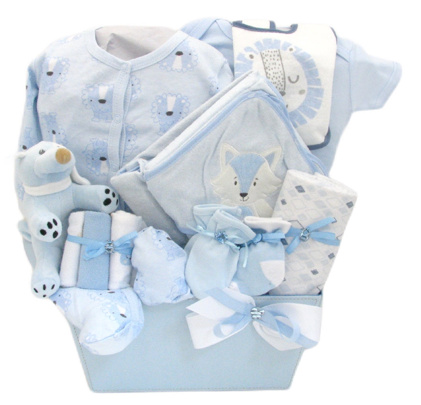 Welcome baby boy glitter gift baskets baby gift baskets negle Image collections