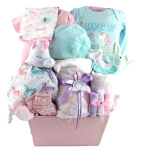 Baby Girl Gift Basket 2095