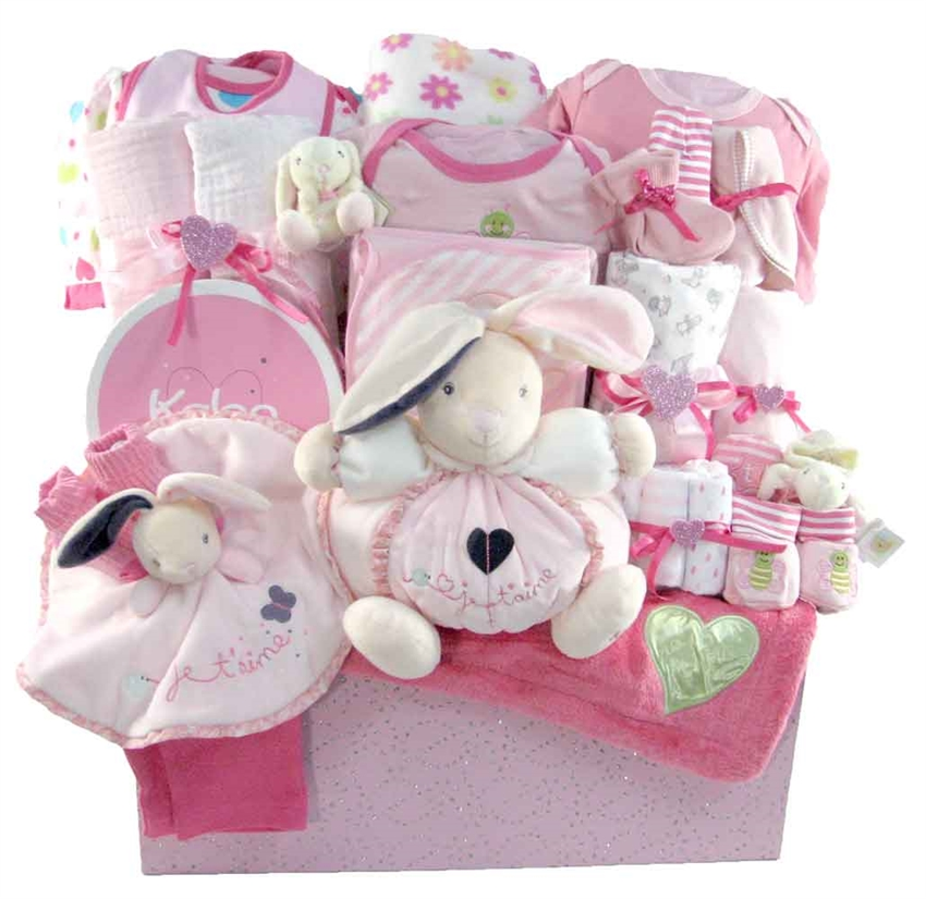 Baby girls deluxe toy box glitter gift baskets neutral baby gift baskets 2114 negle Image collections