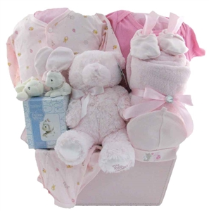 Baby gift baskets pesonalized gifts glitter gift baskets baby gift montreal negle Image collections