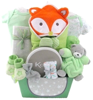 baby Boy gift baskets