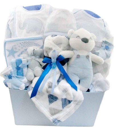 sweet baby boy basket