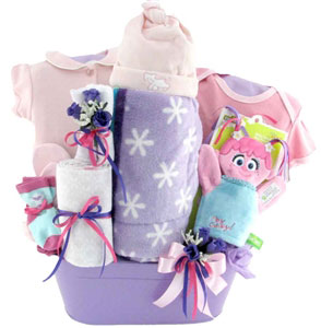 Baby gift baskets pesonalized gifts glitter gift baskets baby gift baskets sesame street negle Image collections