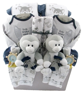 twins baby gift baskets