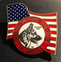 Logo Pin with Flag